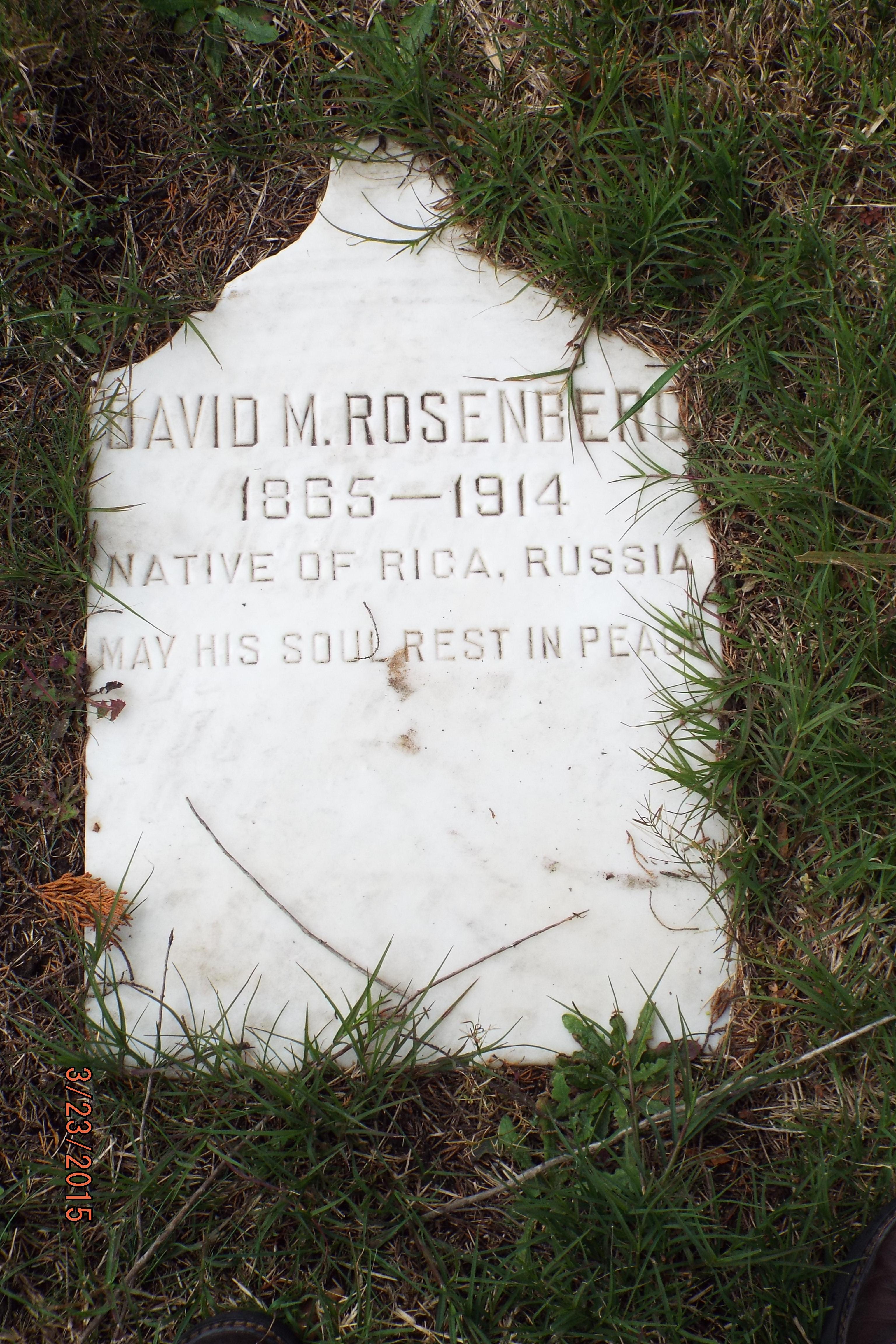 David Rosenberg headstone